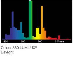 Lumilux-daylight