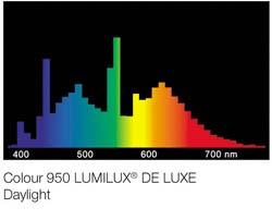 Lumilux-De_Luxe-daylight